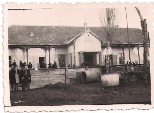 1950 es evek